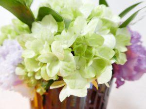 薄い緑の紫陽花の花です。