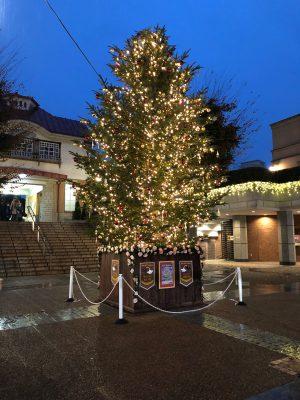 田園調布駅前の大きなクリスマスツリーです。