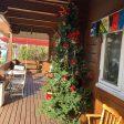 日暮里のカルチャーの入り口に大きなクリスマスツリーが飾ってありました。