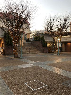 田園調布の駅前の木々には、キラキラのイルミネーションが飾ってあります。