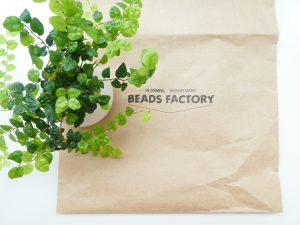 ビーズショップの紙袋と観葉植物です。
