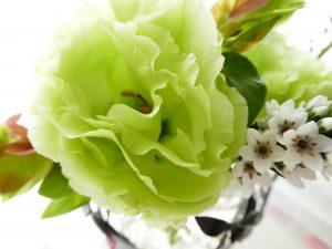 フリルの花びらが美しいトルコキキョウです。癒されます。