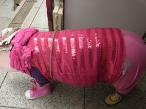 ビルの入り口には、お洋服を着た豚の置物があります。