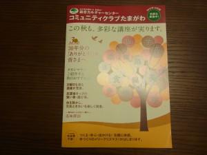 二子玉川で10月生の募集の、木がデザインされた秋らしい新しいパンフレットです。