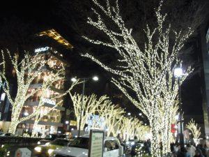 木の電飾の町並みです。キラキラ綺麗。