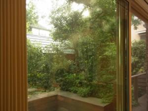 お教室の大きな窓から見えるお庭です。
