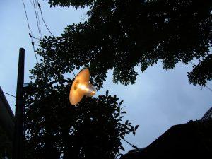 日暮れの空に電燈が灯っています。