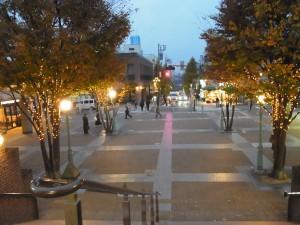 田園調布駅前の、数本の木のシンプルなイルミネーションが綺麗に輝いています。